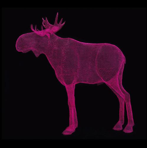 """""""Moose"""" ( 190cm x 200cm x 80cm )"""
